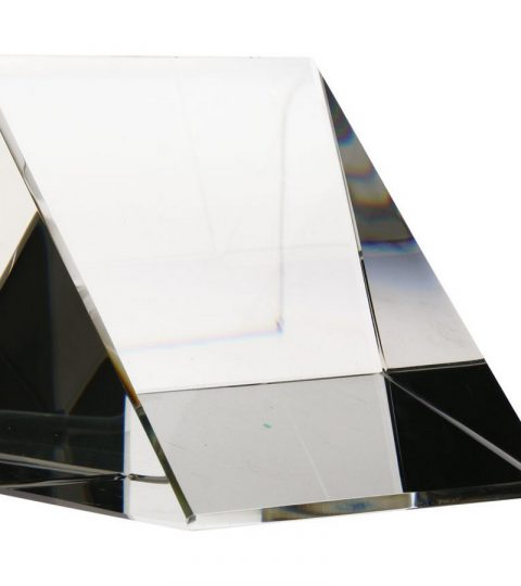 trofee-sticla-T029