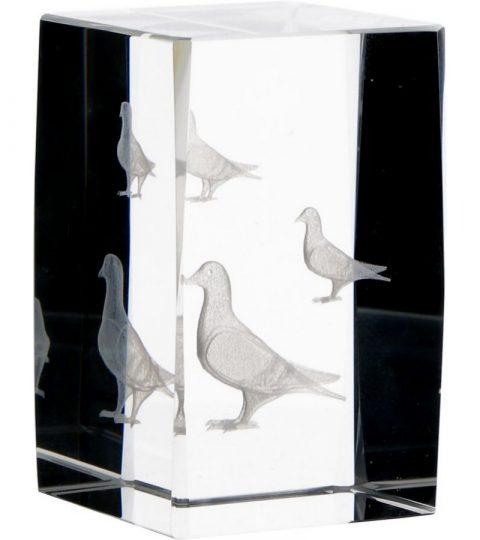 trofee-sticla-kr5080