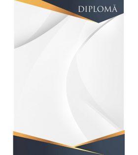 Diplomă carton DIPL04