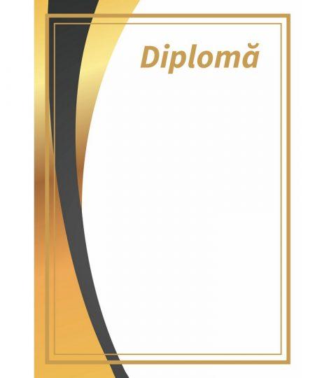 diploma-carton-DIPL05