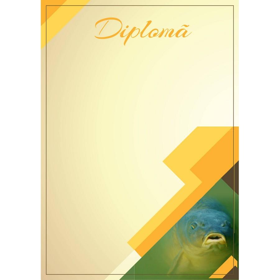 Diplomă carton DIPL06