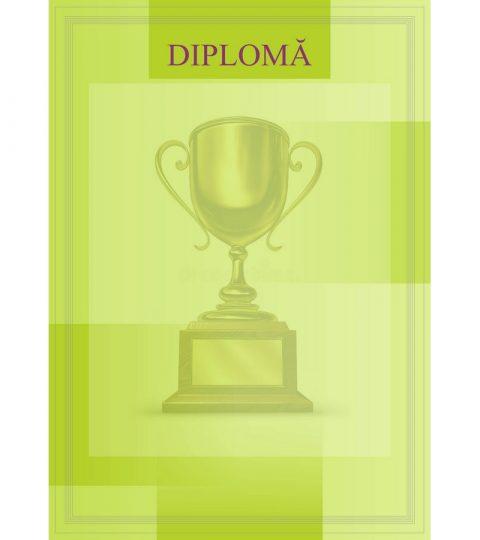 diploma-carton-DIPL08