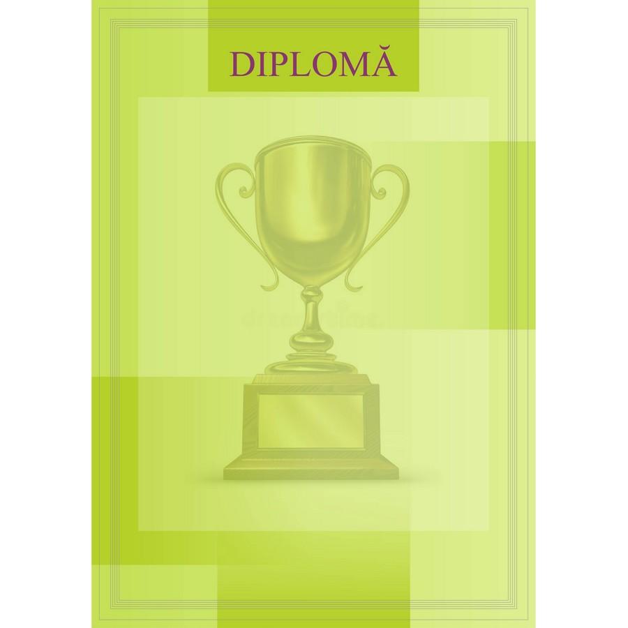 Diplomă carton DIPL08