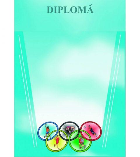 diploma-carton-DIPL12