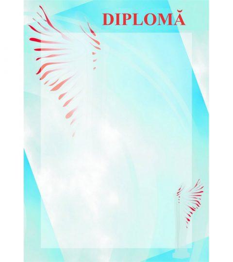 diploma-carton-DIPL13