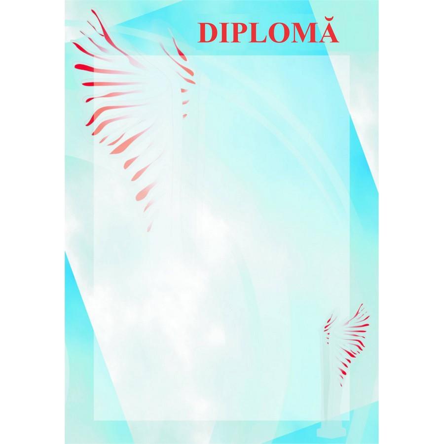 Diplomă carton DIPL13