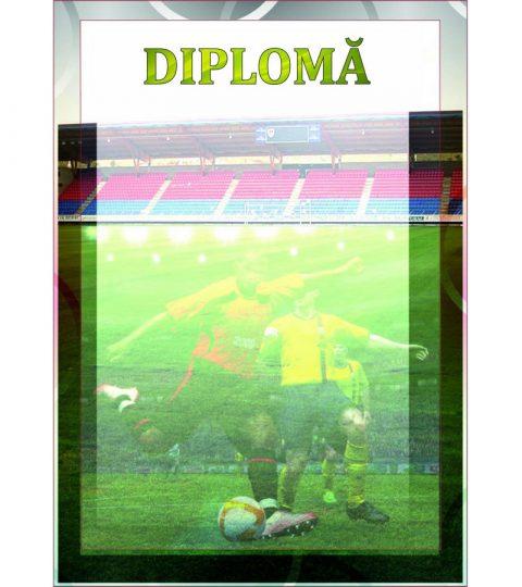 diploma-carton-DIPL14