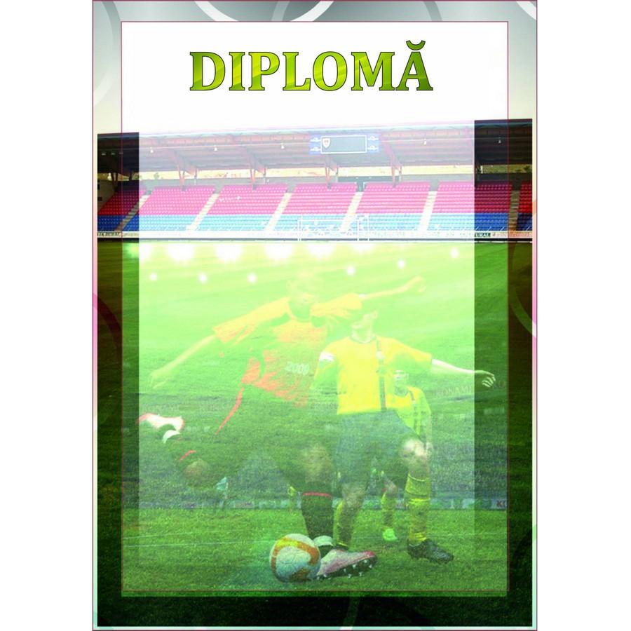 Diplomă carton DIPL14