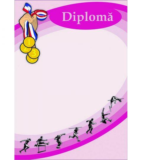 diploma-carton-DIPL15