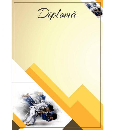 diploma-carton-DIPL17