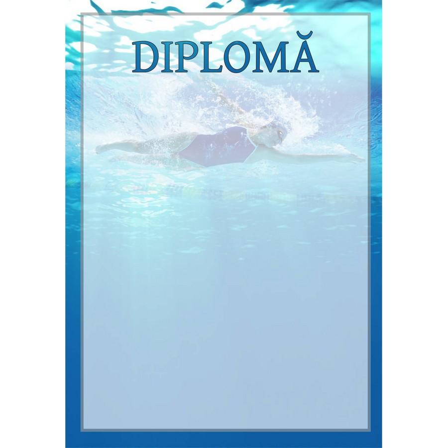 Diplomă carton DIPL19