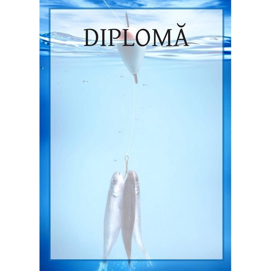 Diplomă carton DIPL20