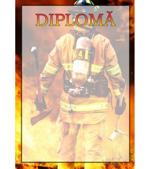 diploma-carton-DIPL21
