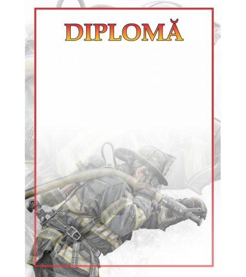 diploma-carton-DIPL22