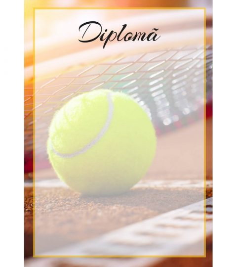 diploma-carton-DIPL24