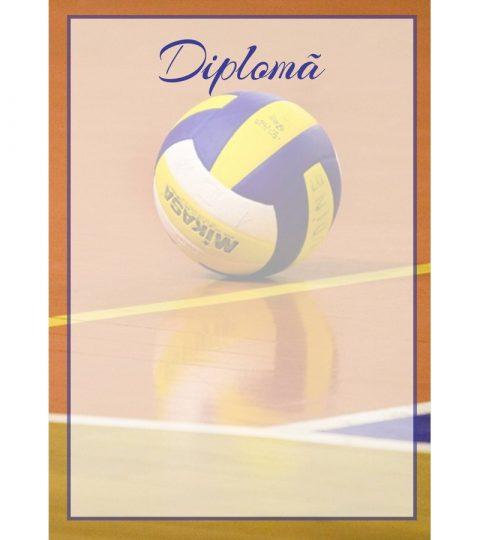 diploma-carton-DIPL25