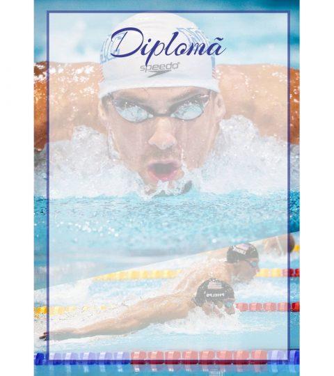 diploma-carton-DIPL27