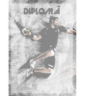 Diplomă carton DIPL28