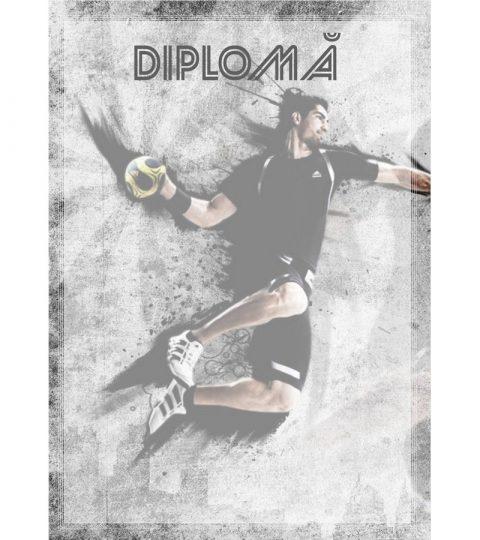 diploma-carton-DIPL28