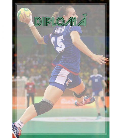 diploma-carton-DIPL29