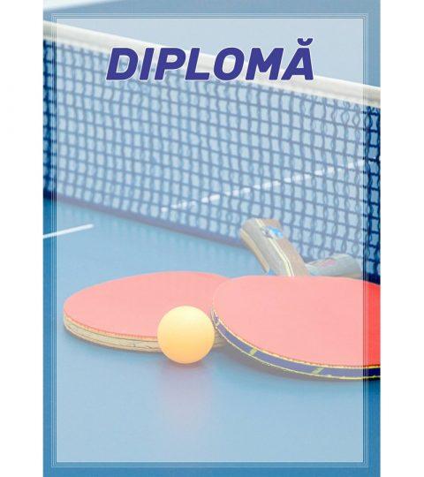 diploma-carton-DIPL31