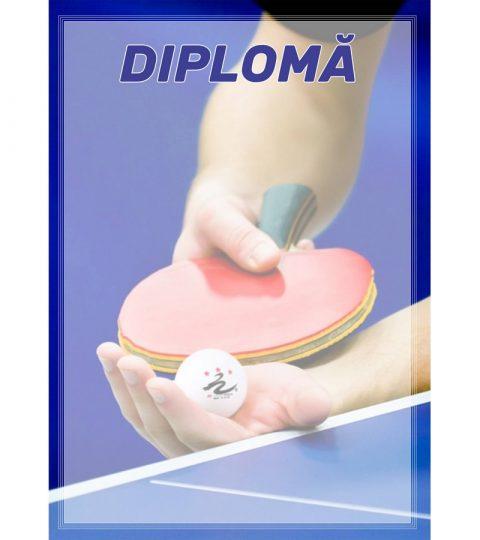diploma-carton-DIPL32