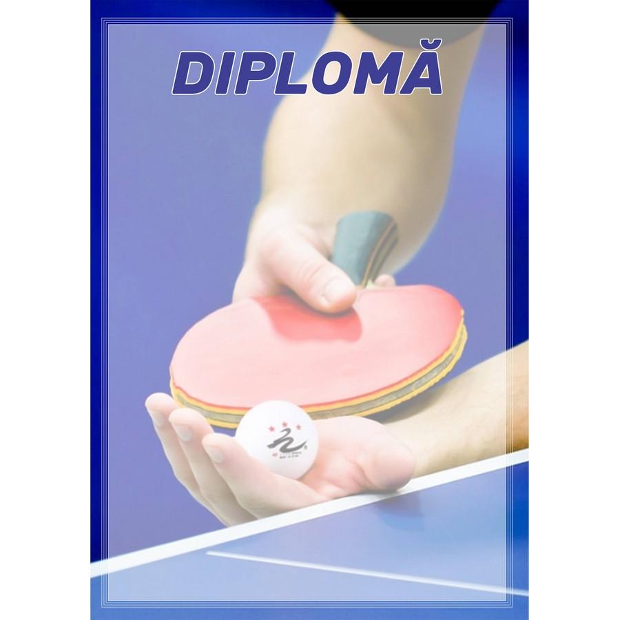 Diplomă carton DIPL32