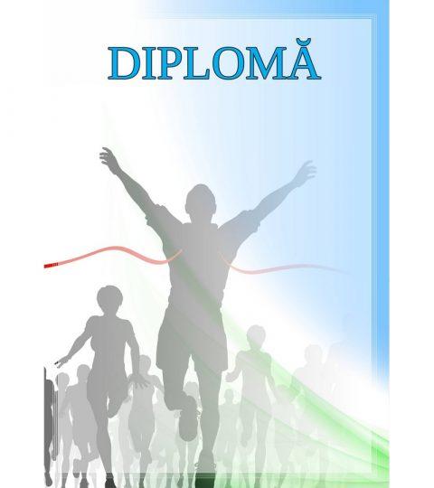 diploma-carton-DIPL33