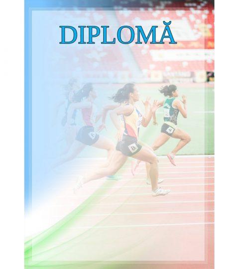 diploma-carton-DIPL34