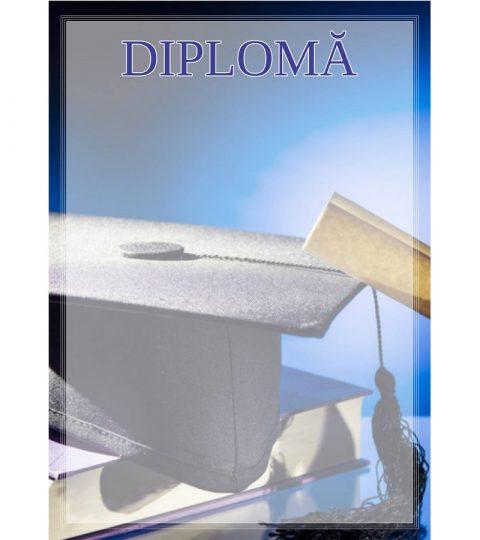 diploma-carton-DIPL38