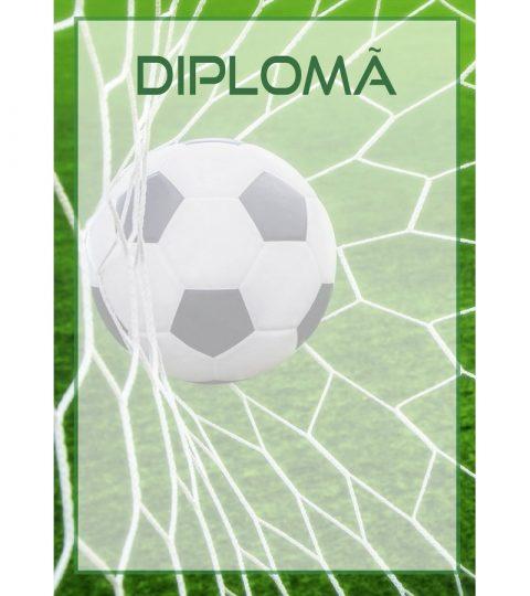 diploma-carton-DIPL39