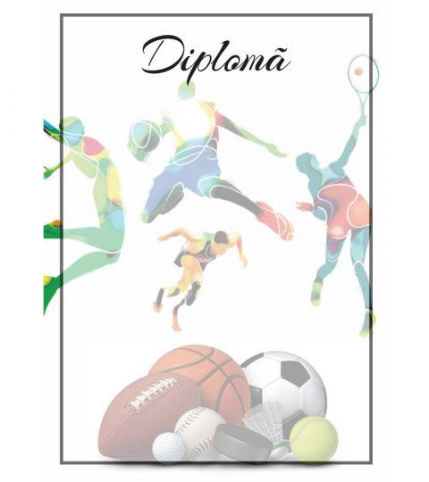 diploma-carton-DIPL43