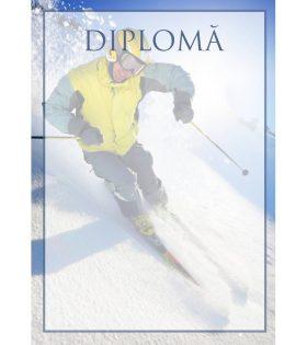 Diplomă carton DIPL45