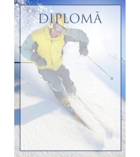 diploma-carton-DIPL45