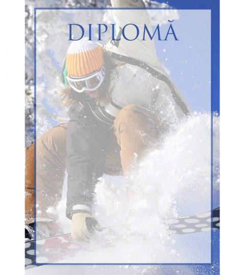 diploma-carton-DIPL46