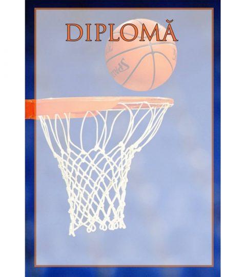 diploma-carton-DIPL49
