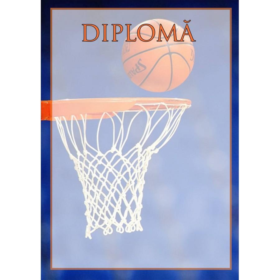 Diplomă carton DIPL49