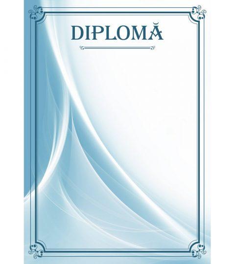 diploma-carton-DIPL50