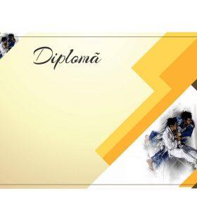Diplomă carton DIPL55