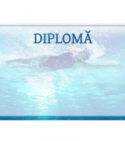 diploma-carton-DIPL56