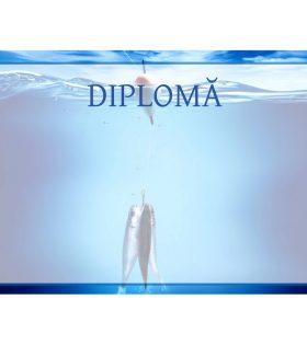 Diplomă carton DIPL57