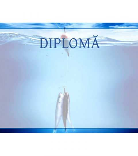 diploma-carton-DIPL57