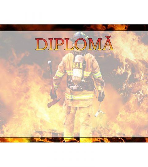 diploma-carton-DIPL58
