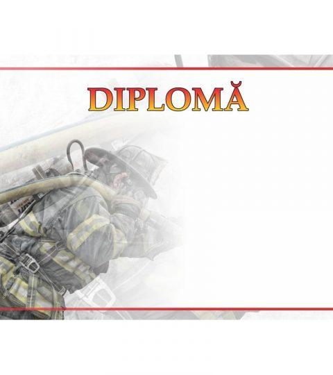 diploma-carton-DIPL59