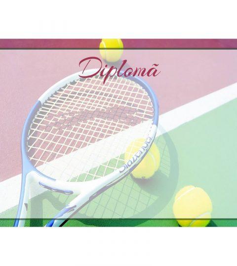diploma-carton-DIPL60