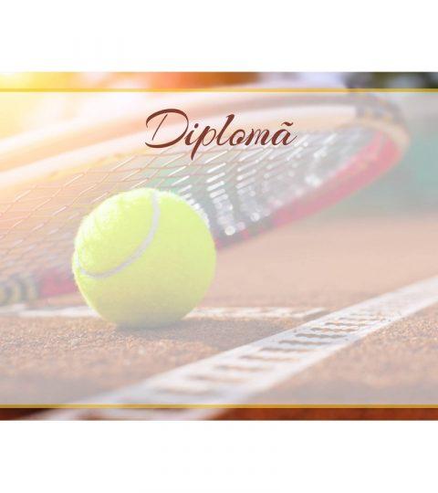 diploma-carton-DIPL61