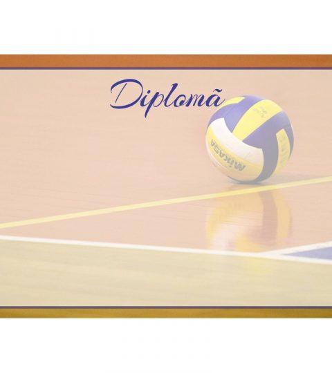 diploma-carton-DIPL62