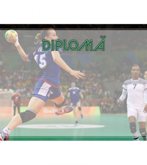 diploma-carton-DIPL65