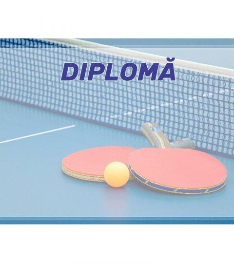 diploma-carton-DIPL67