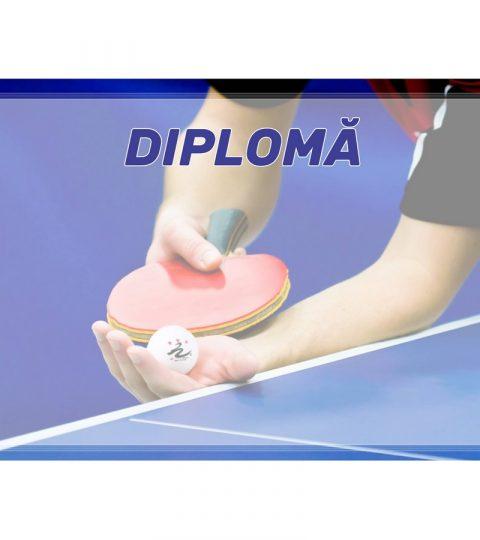 diploma-carton-DIPL68